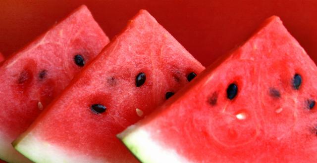 Sigue nuestras recetas para refrescarte durante este verano