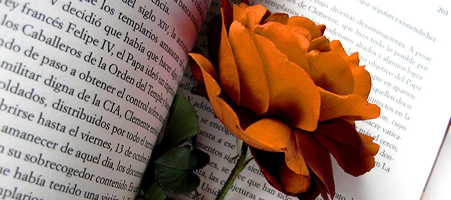 El día del libro y de la rosa
